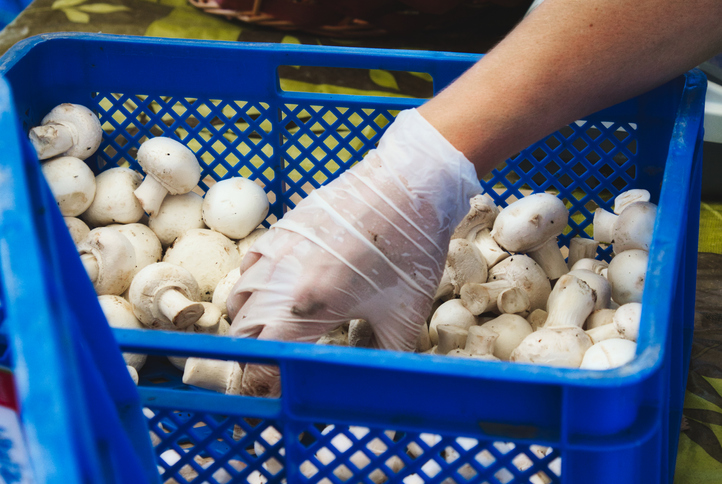 Firm Wins Reinstatement, Back Pay for 4 Mushroom Workers